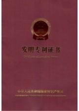 patent china1